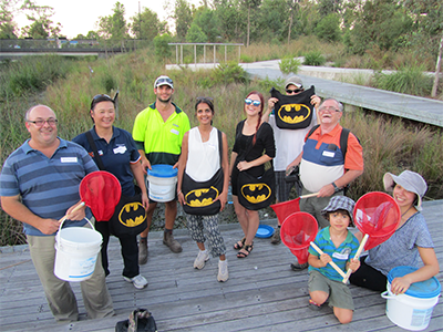 Bat Volunteers