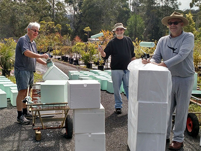 Three men working in a plant nursery